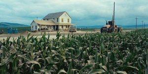 Un champ de maïs dans Interstellar